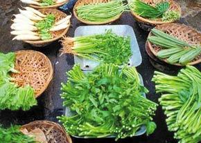 سمی ترین سبزیجات کشور