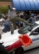 درگیری معترضین و پلیس در آمریکا (+عکس)