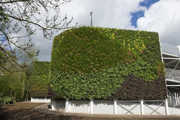 ساخت بزرگترین دیوار سبز اروپا +تصاویر