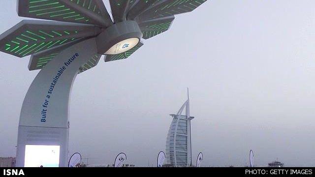 اتصال به اینترنت با نخلهای هوشمند در دبی (+عکس)