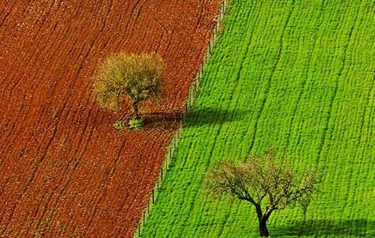 محیط زیست ایران در 2 سالگي دولت یازدهم