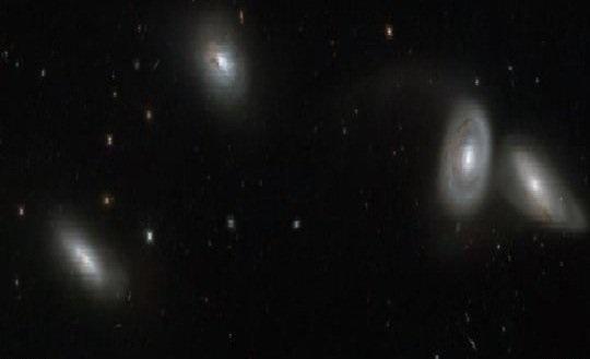 حضور «هابل» در یک میزگرد کهکشانی