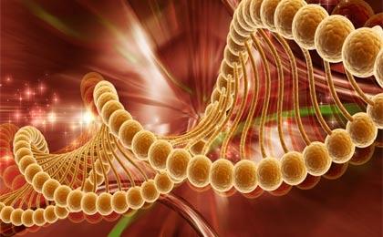 علل اصلی ابتلا به سرطان