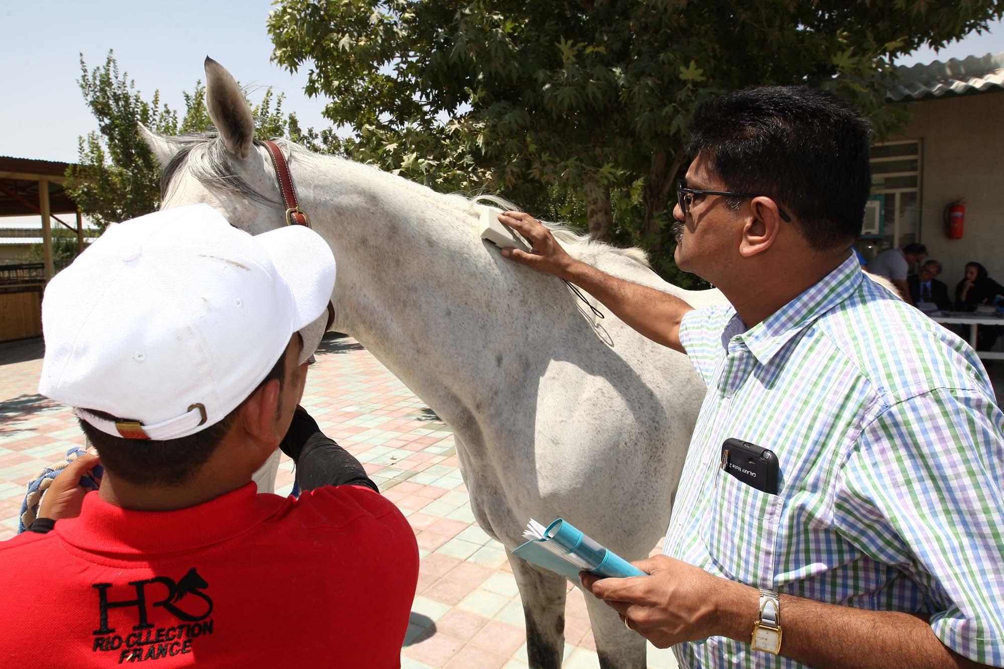 ثبت جهانی تبارنامه اسب های ایرانی
