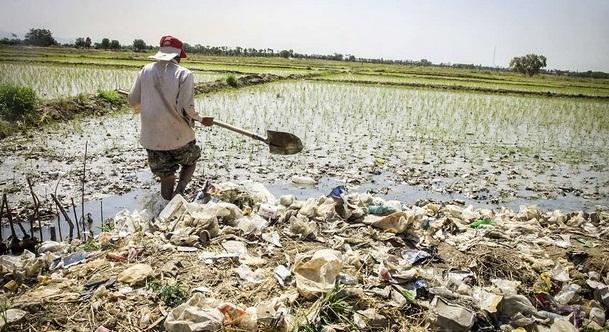 جان مردم در خطر است/ آمار ضد و نقیض مسؤولان درباره آبیاری محصولات کشاورزی با فاضلاب