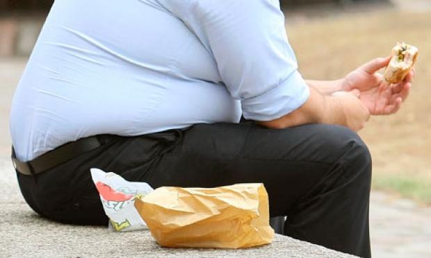 تاثیر باکتریهای روده بر وزن و چربی افراد