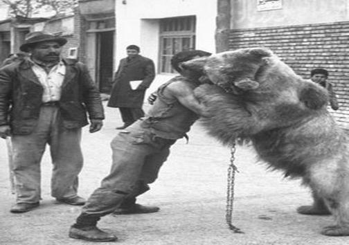 کشتی گرفتن با خرس در تهران قدیم (عکس)