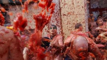 مردم یک شهر اسپانیا 150 تن گوجه فرنگی به سمت هم پرتاب کردند