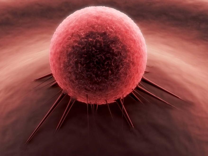 مجله سلامت مجله پزشکی عامل سرطان درمان سرطان پیشگیری از سرطان بیماری سرطان