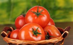 با گوجهفرنگی بیمه شوید