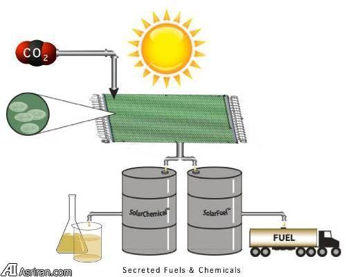 منابع انرژی جایگزین شگفت انگیز
