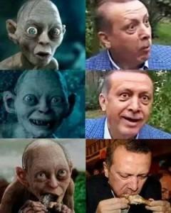 درخواست کمک دادگاه ترکیه: آیا عکس اردوغان و گالوم توهین آمیز است؟