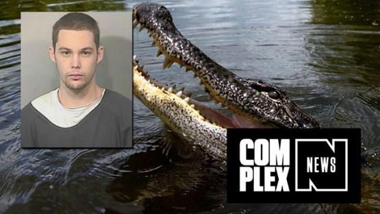 تمساح 3 متری، سارق فراری را خورد!