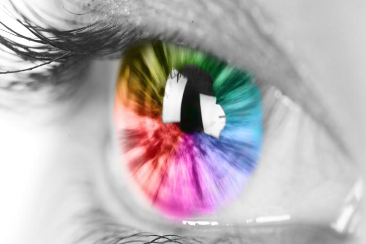 رنگ ها را چگونه می بینیم