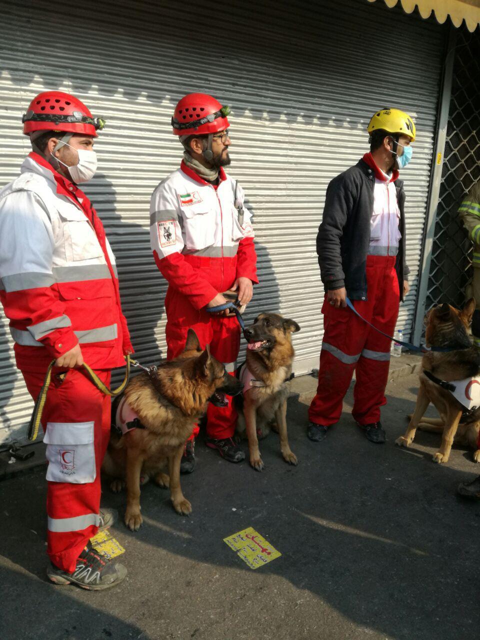 ساختمان پلاسکو فروریخت (+عکس و فیلم ) / 50 آتش نشان کشته شدند / 50 تا 100 نفر زیر آوار ماندند/  اعزام نیروی زمینی به محل حادثه