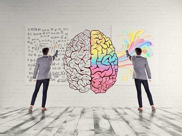 آیا ذهن دانشمندان با ذهن هنرمندان تفاوت دارد؟