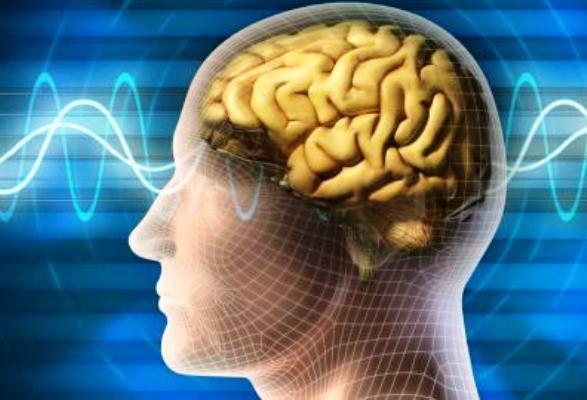 بازگرداندن حافظه با ایمپلنتهای مغزی