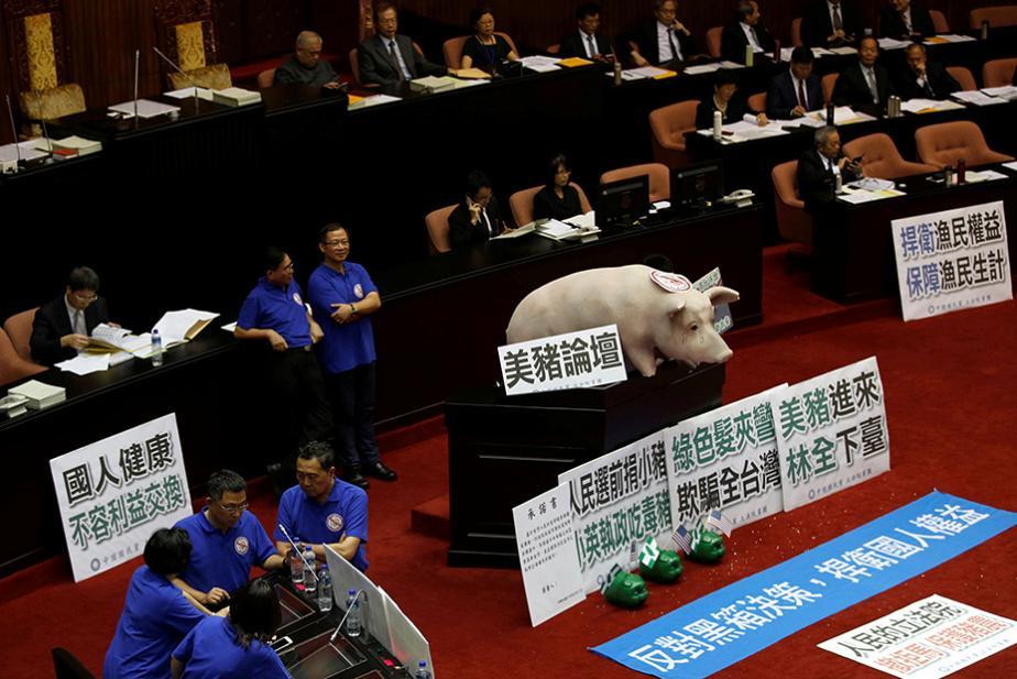 خوک در تریبون پارلمان تایوان (عکس)