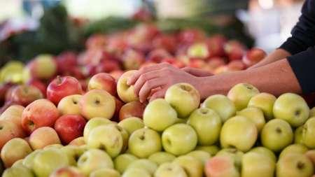 غذاهای پرفیبر؛ راز طول عمر و پیری سالم