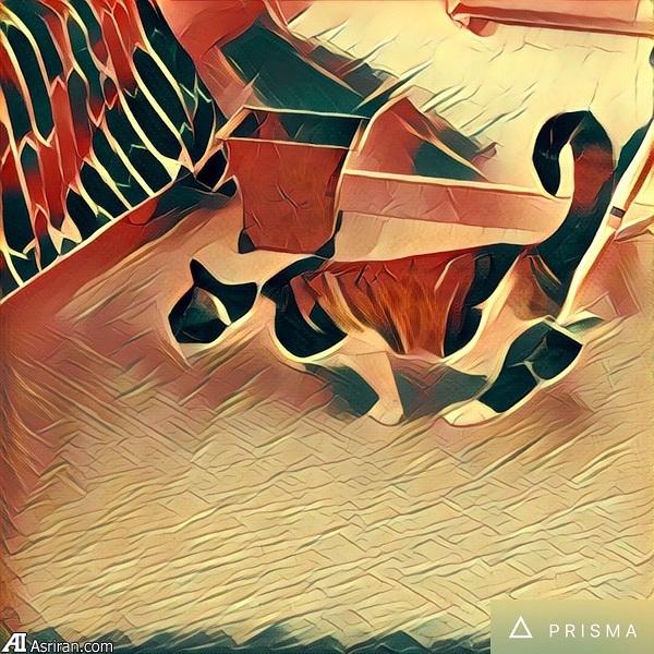 خلق آثار هنری از عکس با اپلیکیشن «پریزما»