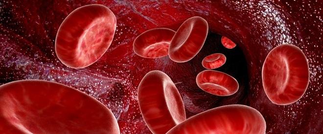 Image result for  لخته خون