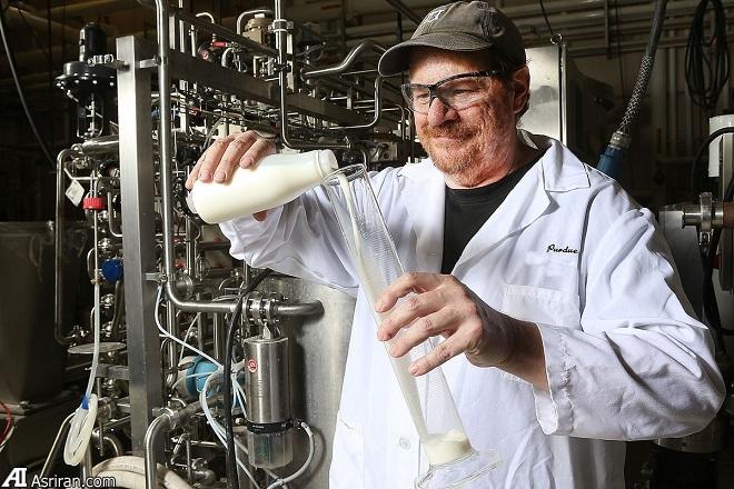 معرفی روشی غیرشیمیایی برای افزایش عمر مفید شیر خوراکی