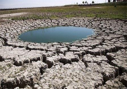 تغییر اقلیم قاتل بی صدای گونه های زیستی