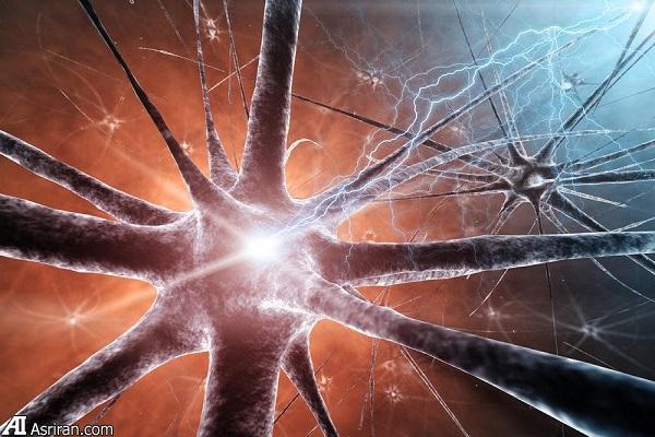 فعالیتهایی که «مغز» میسازند!