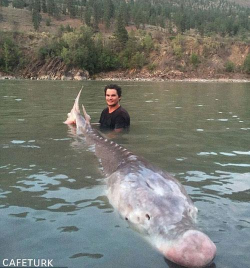 ماهی افسانه ای توسط جوان 19 ساله صید شد (+عکس)