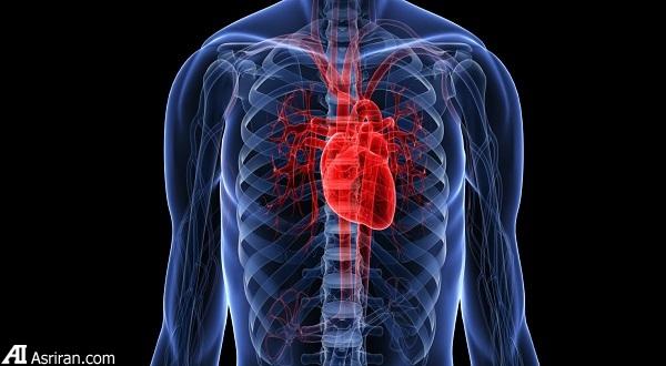 «تپش قلب»؛ نشانهها و درمانها