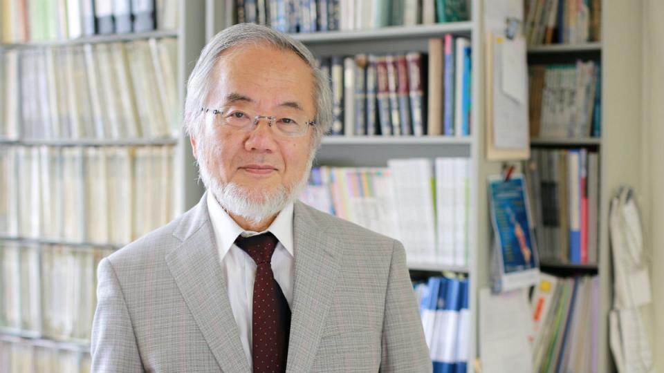 نوبل پزشکی 2016 به یک ژاپنی رسید