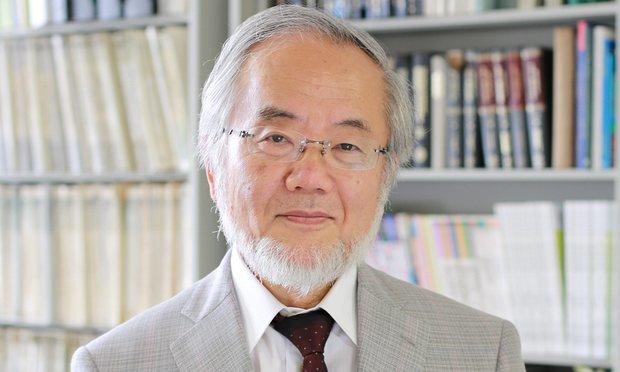 نوبل پزشکی 2016 نصیب ژاپنیها شد!