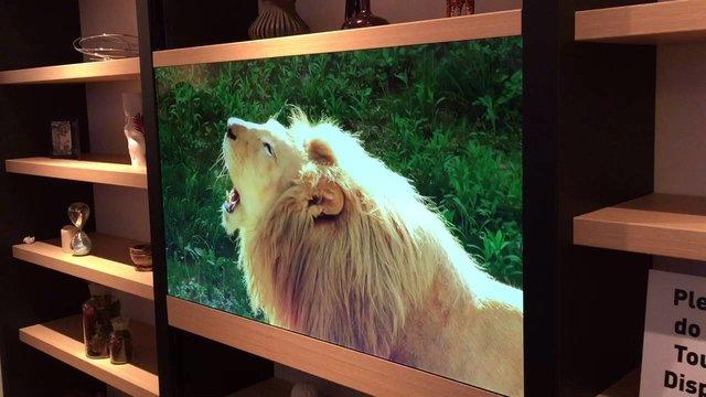 تلویزیون نامرئی ساخته شد (+عکس)