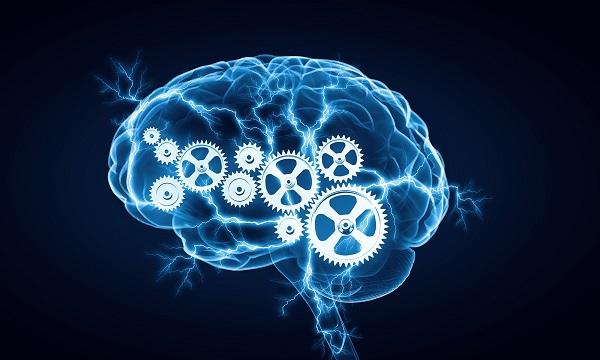 فواید 30 دقیقه ورزش برای مغز