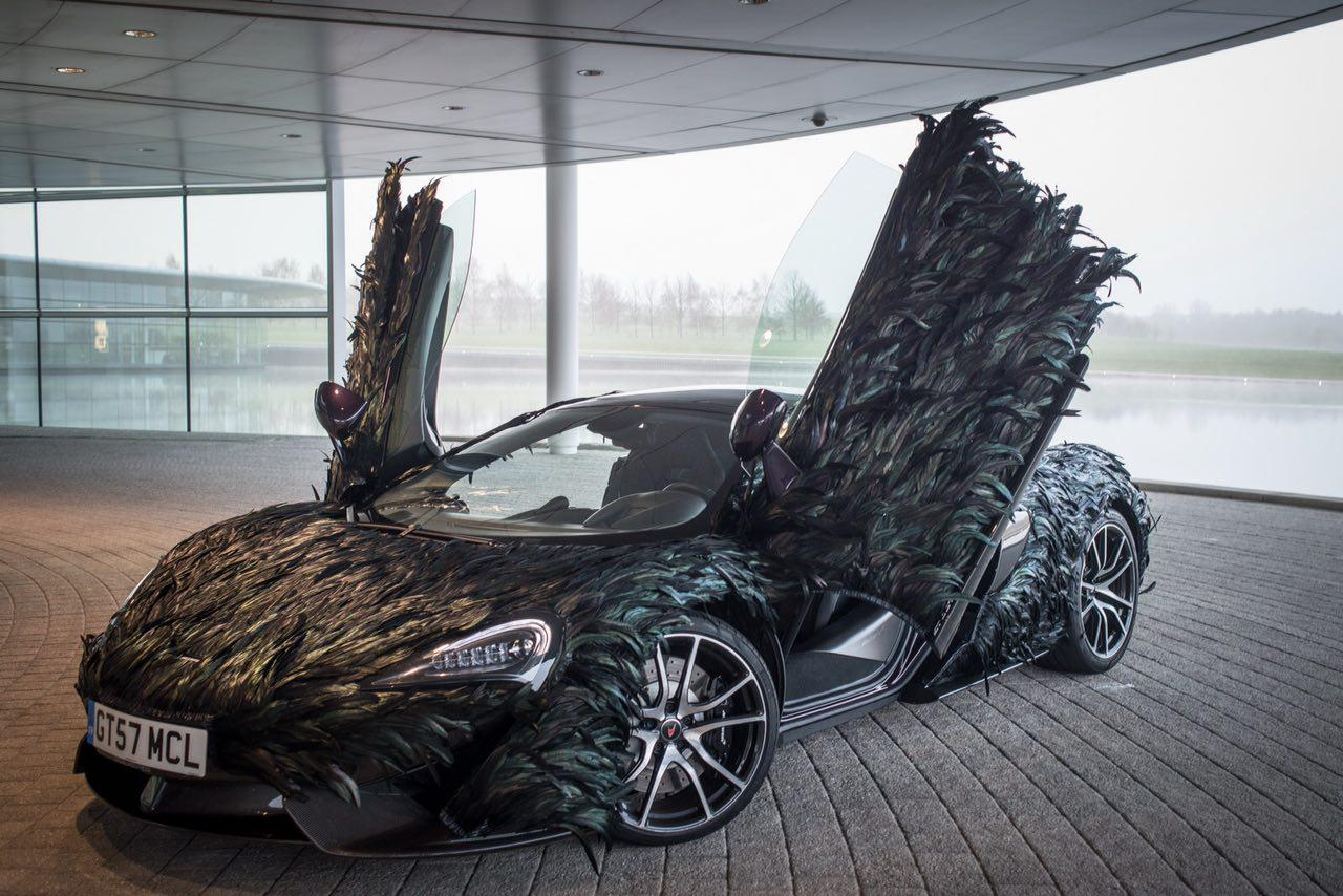 پوششی از پر برای یک خودرو