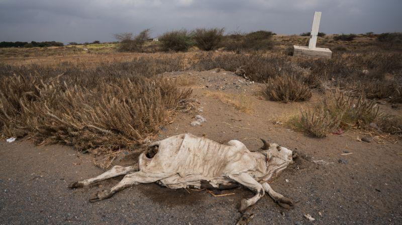 خطر خشک شدن یک چهارم زمین در 30 سال آینده