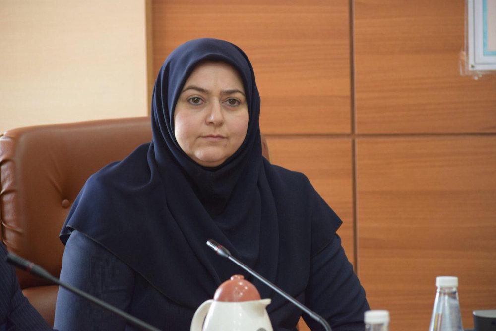 مدیرعامل ایران ایر: آمریکا مجوز ندهد در تحویل هواپیماها به مشکل برمی خوریم