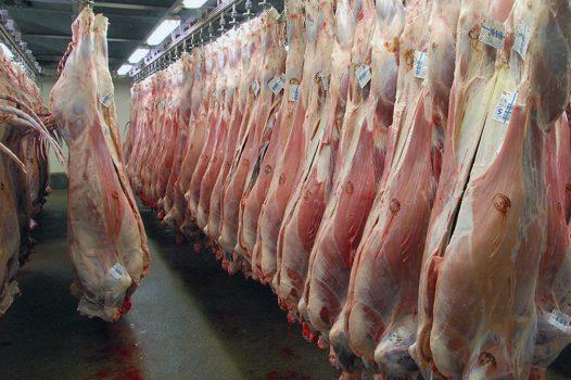 دلیل گرانی گوشت گوسفند تقاضای بالاست/ قاچاق گوسفند به کشورهای عربی معضلی است
