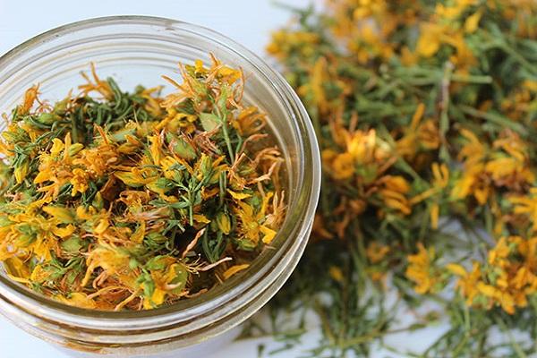 گیاهانی که به جنگ سرطان میروند!