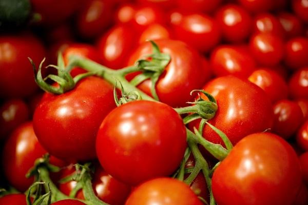 کاهش احتمال ابتلا به سرطان پوست با گوجه فرنگی