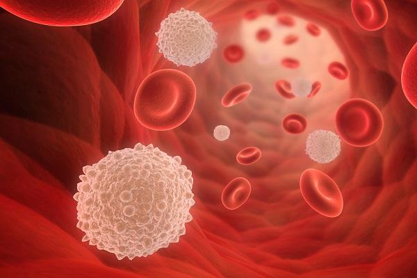 دلایل شمارش پایین سلولهای خون