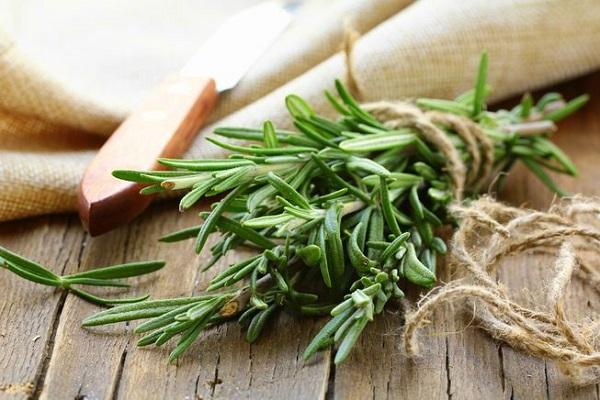 مقابله با سندرم متابولیک با یک گیاه دارویی