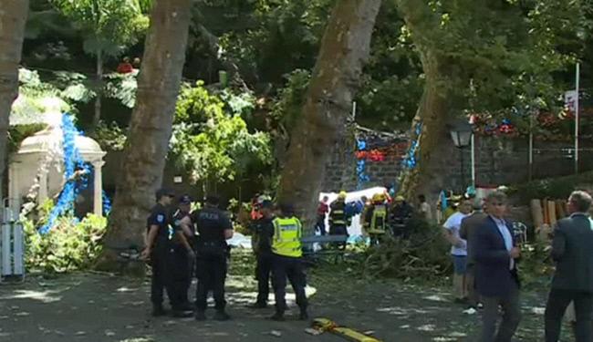 مرگ 12 نفر بر اثر سقوط يک درخت در پرتغال (+عکس)