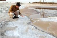 ایجاد دریاچه نمک در جنوب خوزستان / تبدیل تالاب شادگان به شوره زار (+عکس)