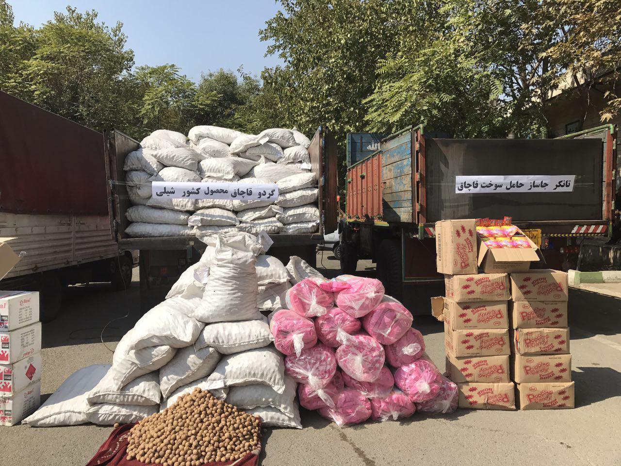 کشف گردو قاچاق محصول شیلی (+عکس)