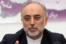 صالحی: قرارگیری سپاه در لیست گروههای تروریستی را اعلام جنگ تلقی میکنیم