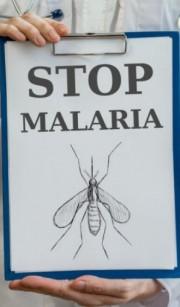 این صندلی، مالاریا را ریشه کن می کند (+فیلم)