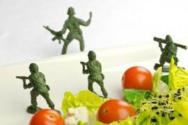لاغری با استفاده از رژیم غذایی نظامی!