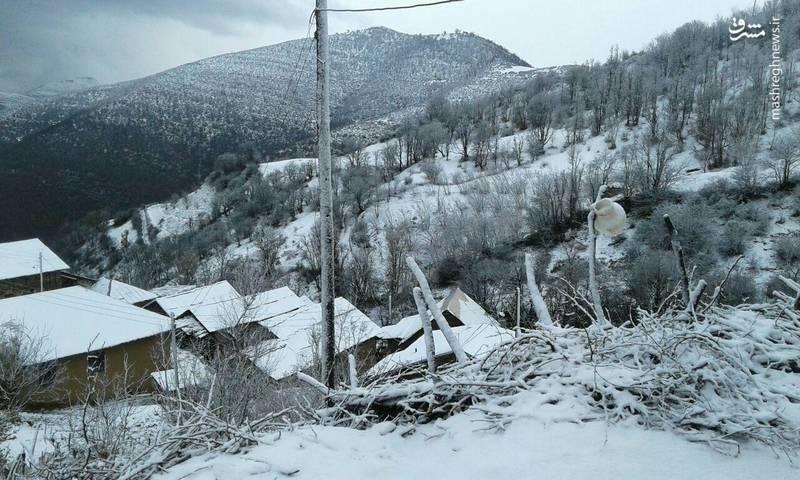 بارش برف پاییزی در گیلان (عکس)