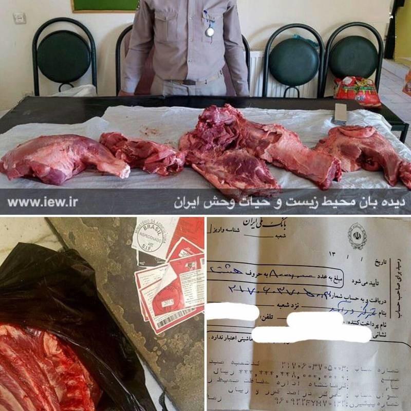فروش گوشت گراز با برچسب گوشت گاو در سرپل ذهاب (عکس)